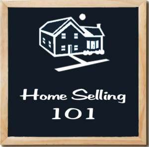 selling-experience-2012-nar-profile-of-home-buyers-and-sellers-seller-incentives