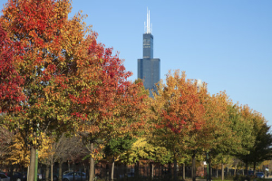 chicagoland-housing-market-november-iar-distressed-sales-housing-recovery