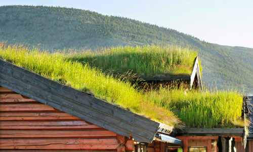 7-Trends-roofing