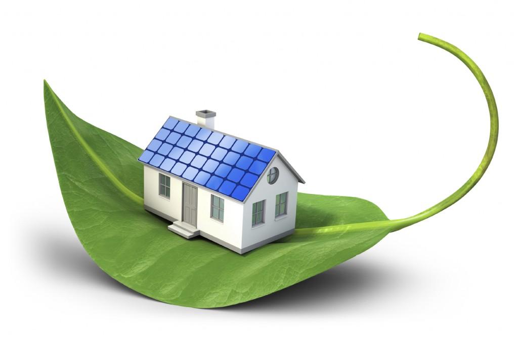 house_leaf