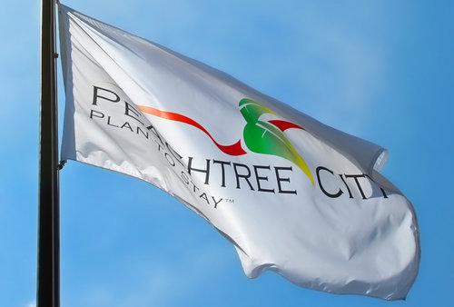 peachtree-city-atlanta-metro-housing-market