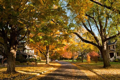 newton-suburb-boston-town-homes-house-home